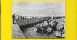 NOIRMOUTIER Pêcheurs à La Ligne à L'Herbaudière (Gausson) Vendée (85) - Noirmoutier