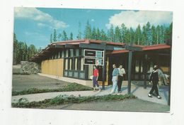 Cp , Etats Unis , Canyon Lodge Administration Building In Canyon Village , YELLOWSTONE Park ,vierge, Ed. Haynes - Yellowstone