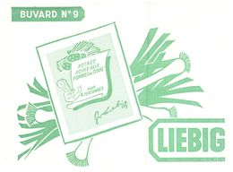 PO L/Buvard Potage Liebig  (N= 7) - Potages & Sauces