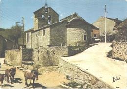 FR66 DORRES - CPM 10 * 15 - Le Balcon De La Cerdagne - église Romane - 4L Chevaux Traversant Le Village - Belle - France