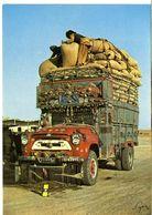 AFGHANISTAN   LES ROUTIERS AFGHANS SONT FIERSDE LEURS CAMIONS  -  CPM 1970 / 80 - Afghanistan