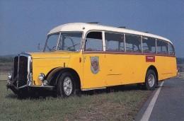 BUS SAURER ALPENWAGEN L4C 50P 1950 BUS SVIZZERA - Buses & Coaches