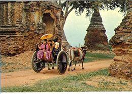 BIRMANIE  PAGA BURMA  SIGHTSEEING IN PAGAN   -  CPM 1970 / 80 - Myanmar (Burma)