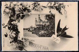 MONACO - MONTE CARLO - SOUVENIR - FLEURS - FLEUR - HIRONDELLE - DOS 1900 - Monte-Carlo