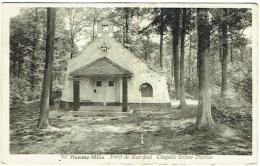 Hamme-Mille. Forêt De Meerdael. Chapelle Sainte Thérèse. - Bevekom
