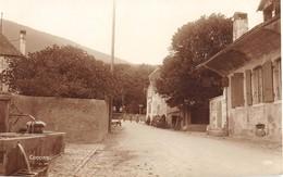 CPA  Suisse, CONCISE, Centre Du Village, Carte Photo - VD Vaud
