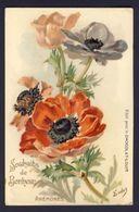 ANEMONES. Souhaits De Bonheur / Poppy Anemones Wishes Of Happiness ~ Eudes A/s - Publicité