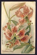LILIUMS. Mes Meilleurs Voeuz / Liliums (tiger Lily) My Best Wishes ~ Eudes A/s - Publicité