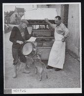 1952  --  VERTUS MARNE  LE GARDE CHAMPETRE CONTROLANT UN COMMERCANT   3N703 - Vieux Papiers