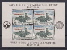 2047 Belgie Belgische Zuitpoolexpedietie 1957-58 . - Blocks & Sheetlets 1924-1960