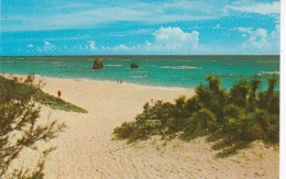 Bermuda Warwick Long Bay - Bermuda