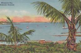 Bermuda Somerset Mangrove Bay - Bermuda