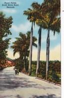 Bermuda Royal Palms South Shore Road - Bermuda