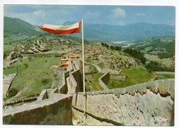SISTERON--Couronnement De La Citadelle,le Chemin De Ronde - Sisteron