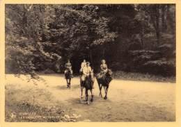 CPM - BRUXELLES - Les Cavaliers Au Bois De La Cambre - Forests, Parks