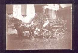 Photo Format 11,7 X 16,7 Cms Localisée à Neuville Sur Orne ( Ornain ) Marie Louise Labin Beau Plan D'attelage - Lieux
