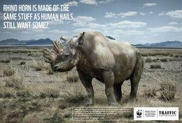 T87-011  ] Rhinoceros  WWF W. W. F. Endangered Species , China Pre-stamped Card,postal Stationery - Other
