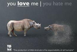 T87-016  ] Rhinoceros  WWF W. W. F. Endangered Species , China Pre-stamped Card,postal Stationery - Other