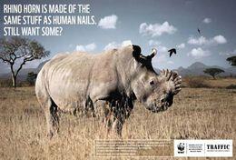 T87-017  ] Rhinoceros  WWF W. W. F. Endangered Species , China Pre-stamped Card,postal Stationery - Other