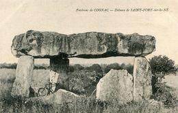 MENHIR(SAINT FORT SUR LE NE) - Dolmen & Menhirs