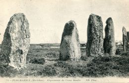 MENHIR(PLOUHARNEL) - Dolmen & Menhirs