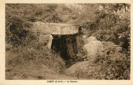 MENHIR(LARDY) - Dolmen & Menhirs