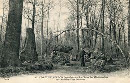 DOLMEN(MEUDON) MENHIR - Dolmen & Menhirs