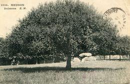 DOLMEN(MEUDON) ARBRE - Dolmen & Menhirs