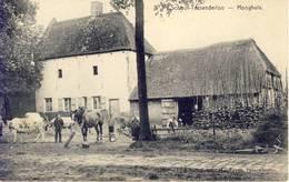 Tessenderloo Tessenderlo Hooghuis (Schoot) - Tessenderlo