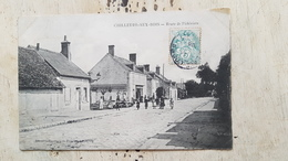45 - CPA Animée CHILLEURS-AUX-BOIS (Loiret)-  Route De Pithiviers - Otros Municipios