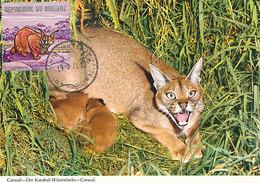 D32631 CARTE MAXIMUM CARD 1971 BURUNDI - CARACAL LYNX CP ORIGINAL - Big Cats (cats Of Prey)