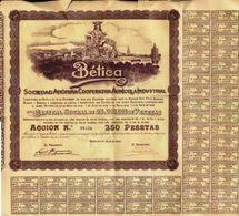 Bética. Sociedad Anónima Cooperativa Agrícola Industrial - Agricultura
