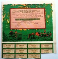 "Colonizadora De La Guinea Continental, S. A. ""COGUISA"" - Agriculture"
