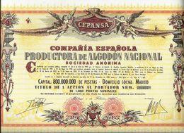 Compañía Española Productora De Algodón Nacional S. A. - Agricultura