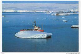 Terres  Australes Et Antarctiques Françaises - POLAR BJÖRN - Navire De Ravitaillement Des Expéditions - TERRE ADELIE - TAAF : Terres Australes Antarctiques Françaises