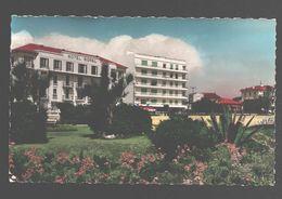 Antibes - Les Jardins Au Bord De Mer Et Les Grands Hôtels - Hôtel Royal - Colorisée - Antibes