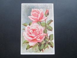 AK Künstlerkarte 1922 Blumen / Rose. Mad. Abel Chatenay. Michel Nr. 151 EF. Bürgel - Blumen