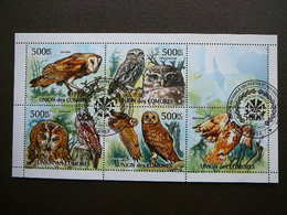 Owls. Eulen. Les Hiboux # Comoros # 2011 Used S/s # Birds - Owls