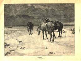 Verlassen (nach Einem Gemälde Von Alfred Roloff)  / Druck,entnommen Aus Zeitschrift / 1910 - Books, Magazines, Comics