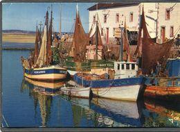 CPM - LE CROISIC - Bateaux De Pêche Devant La Criée - Le Croisic