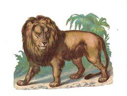 DECOUPI GAUFFRE  LION - - Animals