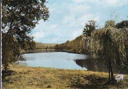 BUC L'étang De La Geneste - Buc