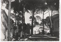 83..CENTRE FAMILIAL DE VACANCES  ATC DE SAINT RAPHAEL VALESCURE - Saint-Raphaël