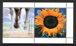 GREAT BRITAIN 2000 Millennium Stamps/Sunflower: Pair Of Stamps (ex Booklet) UM/MNH - 1952-.... (Elizabeth II)