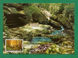 Luxemburg 1982  Mi.Nr. 1048 , Petite Suisse Luxembourgeoise - Maximum Card - Jour D'Emission Luxembourg 25-2-1982 - Cartes Maximum