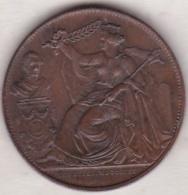 Belgique .module 5 Centimes 1856  . XXV Anniversaire De L´inauguration Du Roi - 03. 5 Centimes
