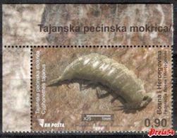Bosnia Sarajevo- Tajan Cave Woodlouse  2014 MNH - Bosnia And Herzegovina