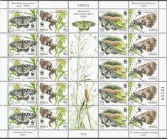 SRB 2016-657-60 WWF BUTTERFLY, SERBIA, MS, MNH - Serbien