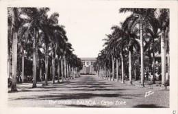 Panama Canal Zone Balboa The Prado Real Photo - Panama