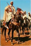 MAROC  Cavalier Prêt Pour La Fantasia  Horses - Cavalli